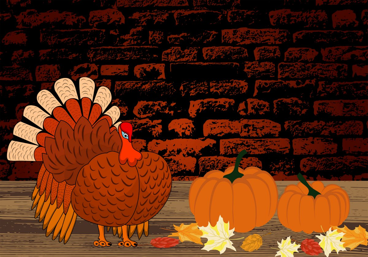 Can 'Thanksgiving Turkey' Become a Tradition of the Past?