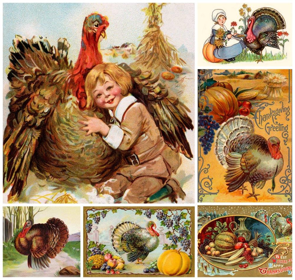 Turkey-collage01
